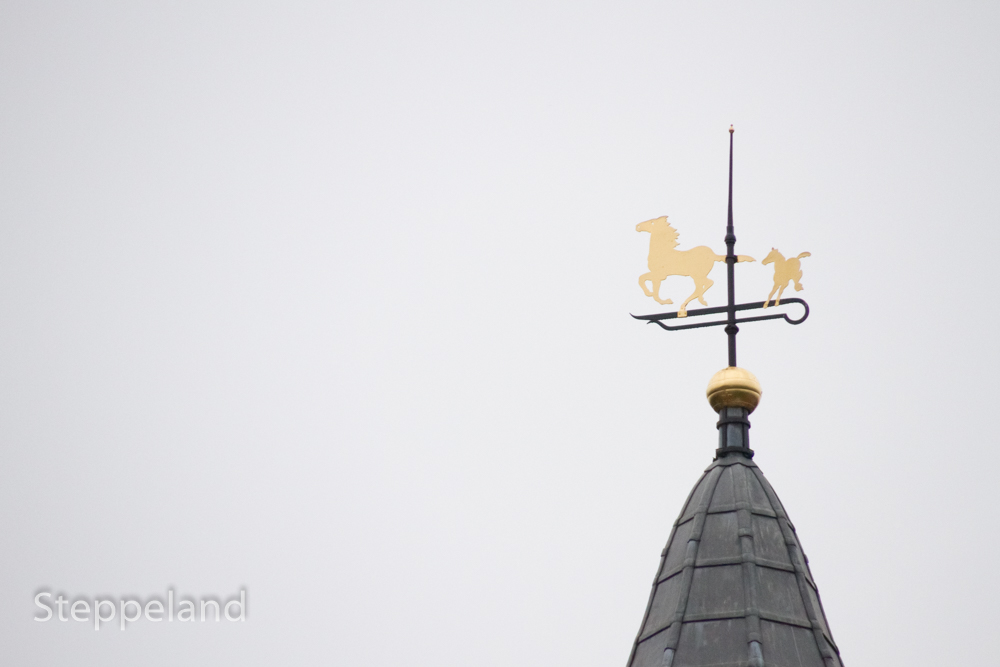 Mare and foal on the weather vane of the Royal stables - 300 mm tele